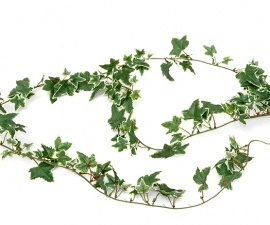 Faux Variegated Ivy Garland